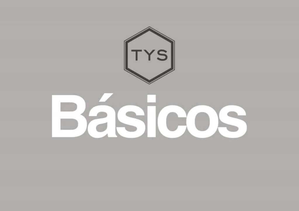basico-camisetas-TYS-1024x724 Colección de ropa TYS para invierno 2021
